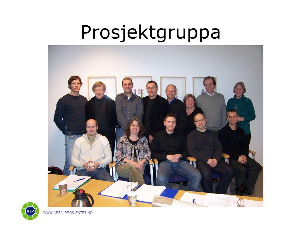 Prosjektgruppa WWW.AREALPROSJEKTET.NO