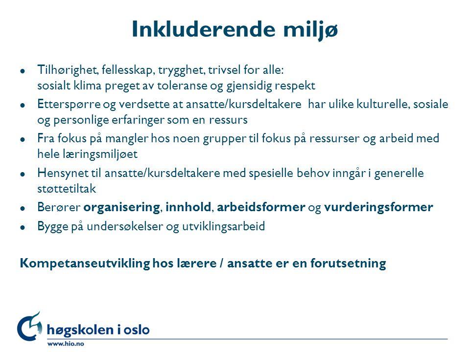 Litteratur MaiA – Mangfold i Akademia 2004-2008.