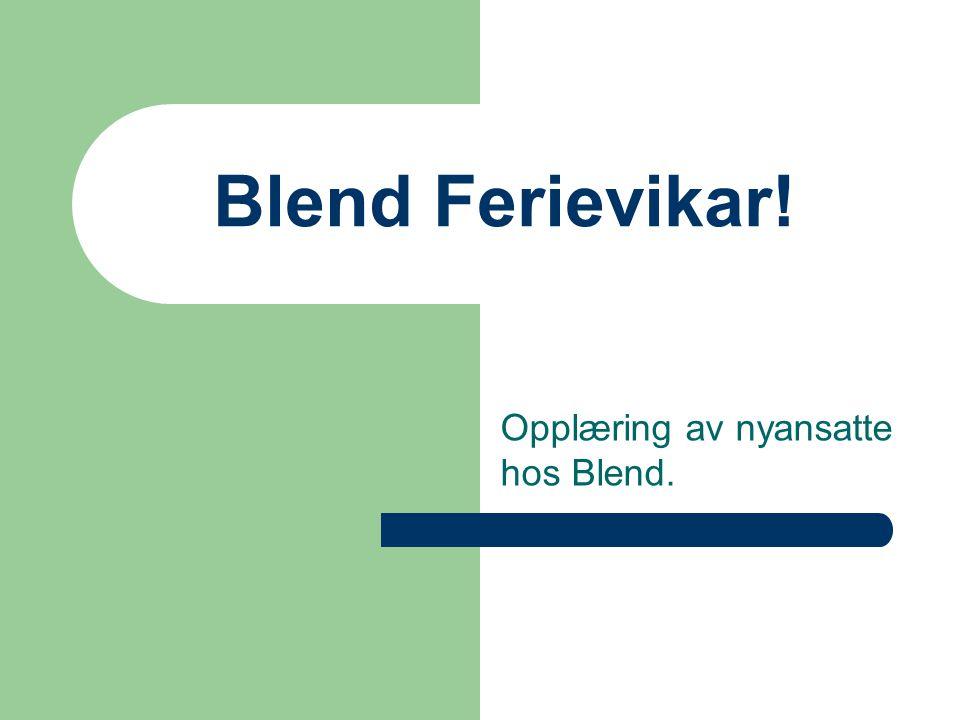 Blend Ferievikar! Opplæring av nyansatte hos Blend.