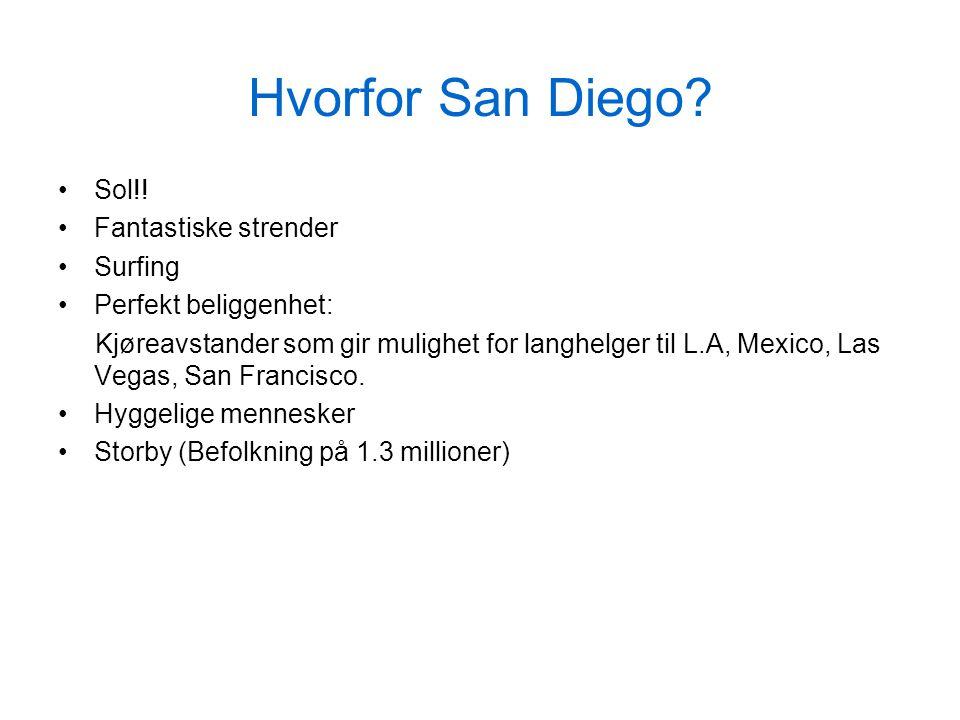 Hvorfor San Diego. Sol!.