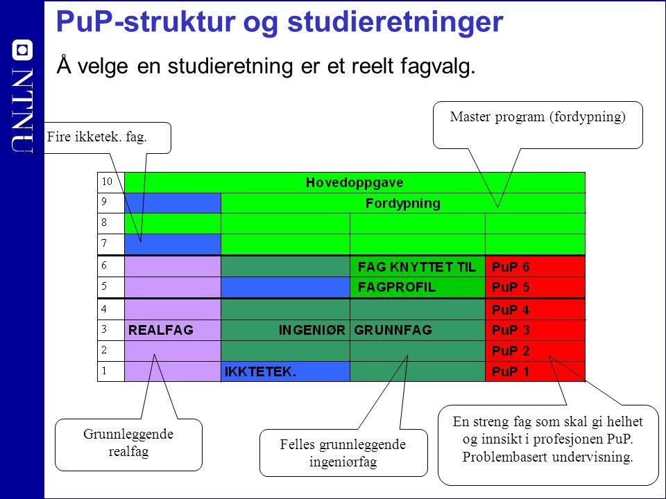 PuP-struktur og studieretninger Å velge en studieretning er et reelt fagvalg. En streng fag som skal gi helhet og innsikt i profesjonen PuP. Problemba