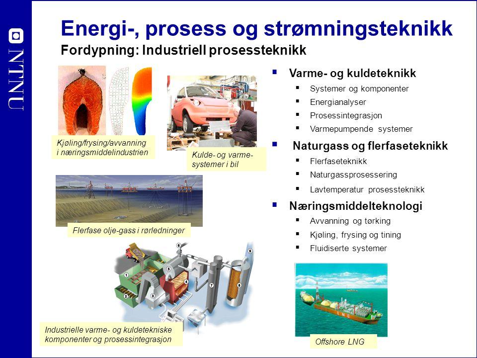 Energi-, prosess og strømningsteknikk Fordypning: Industriell prosessteknikk  Varme- og kuldeteknikk  Systemer og komponenter  Energianalyser  Pro