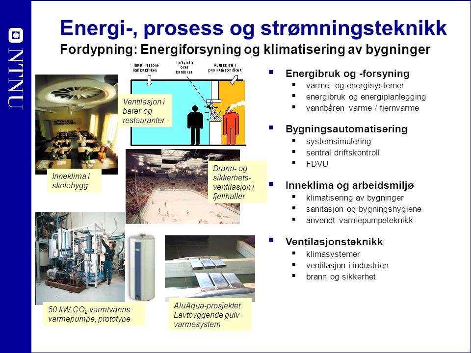 Energi-, prosess og strømningsteknikk Fordypning: Strømningsteknikk  Oljehydraulikk og pneumatikk  Design av turbiner og pumper  Systemanalyse  Kavitasjon  Hydrauliske strømningsmaskiner  Komponenter  Styring  Servomekanismer  Strømningsmekanikk  Turbulensfysikk  Numeriske strømningsberegninger  Strømning i mikro-media  Flerfasestrømning  Aero- og hydrodynamikk Numeriske beregninger av strømningsfelt Francis-turbin Pelton-turbin Aerodynamikk Vindturbiner
