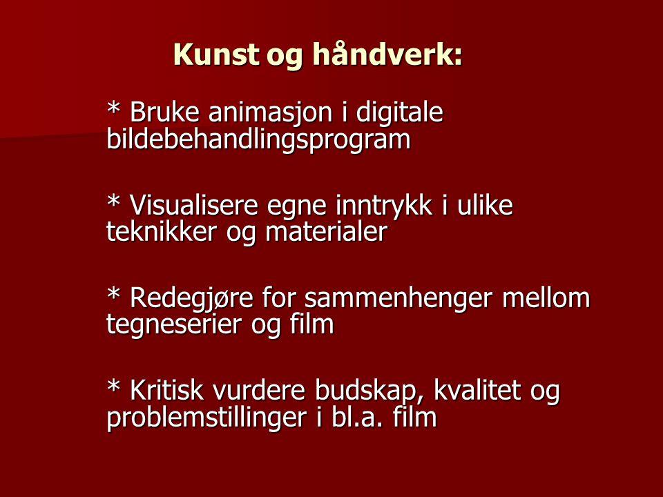 Kunst og håndverk: * Bruke animasjon i digitale bildebehandlingsprogram * Visualisere egne inntrykk i ulike teknikker og materialer * Redegjøre for sammenhenger mellom tegneserier og film * Kritisk vurdere budskap, kvalitet og problemstillinger i bl.a.