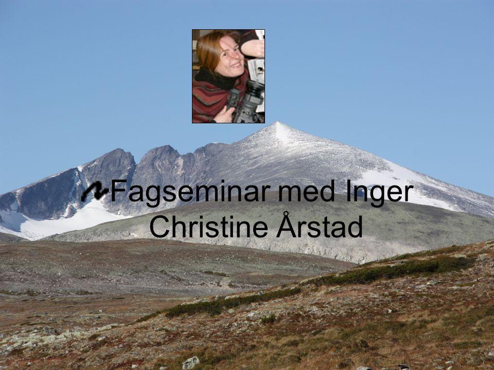 Fagseminar med Inger Christine Årstad