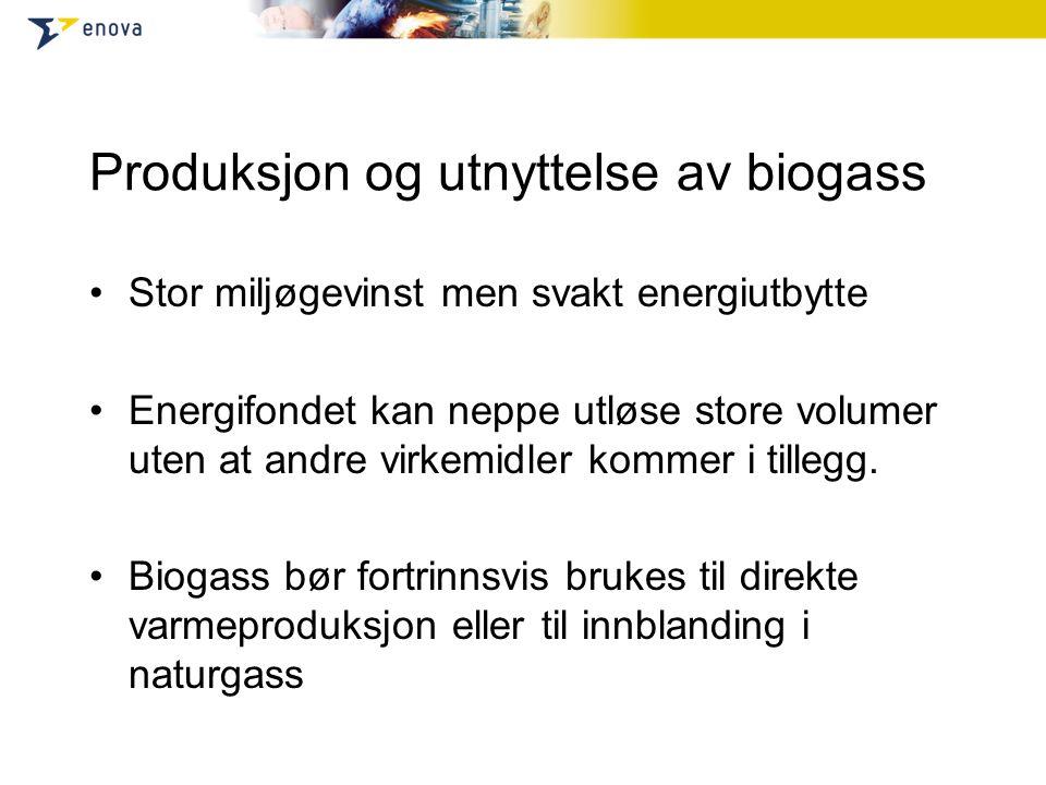 Produksjon og utnyttelse av biogass Stor miljøgevinst men svakt energiutbytte Energifondet kan neppe utløse store volumer uten at andre virkemidler kommer i tillegg.