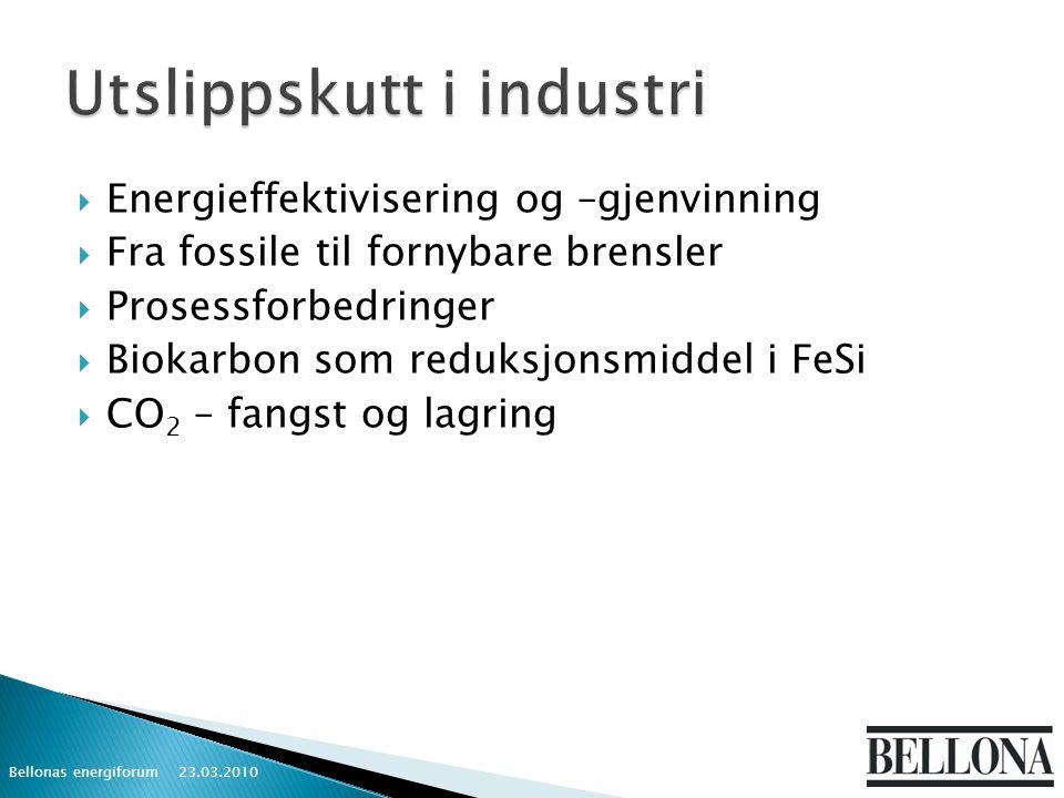  Energieffektivisering og –gjenvinning  Fra fossile til fornybare brensler  Prosessforbedringer  Biokarbon som reduksjonsmiddel i FeSi  CO 2 – fangst og lagring 23.03.2010 Bellonas energiforum