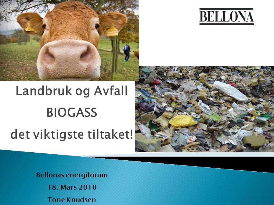 Landbruk og Avfall BIOGASS det viktigste tiltaket! Bellonas energiforum 18. Mars 2010 Tone Knudsen
