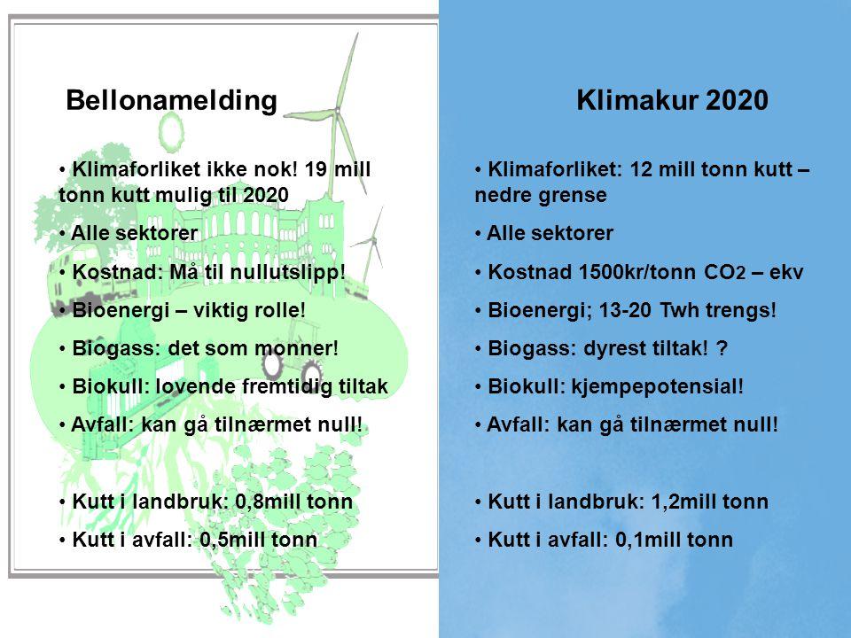 Bellonamelding Klimakur 2020 Klimaforliket: 12 mill tonn kutt – nedre grense Alle sektorer Kostnad 1500kr/tonn CO 2 – ekv Bioenergi; 13-20 Twh trengs.