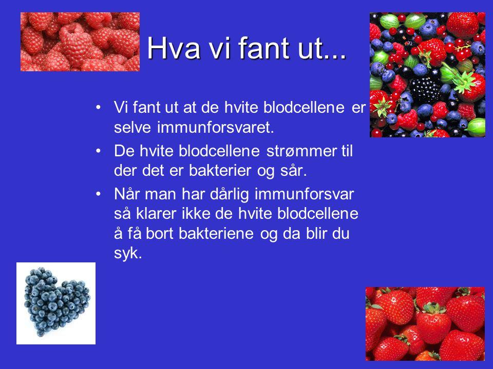 Spørsmålet:Spørsmålet: Hvorfor har noen dårligere immunforsvar enn andre?Hvorfor har noen dårligere immunforsvar enn andre.