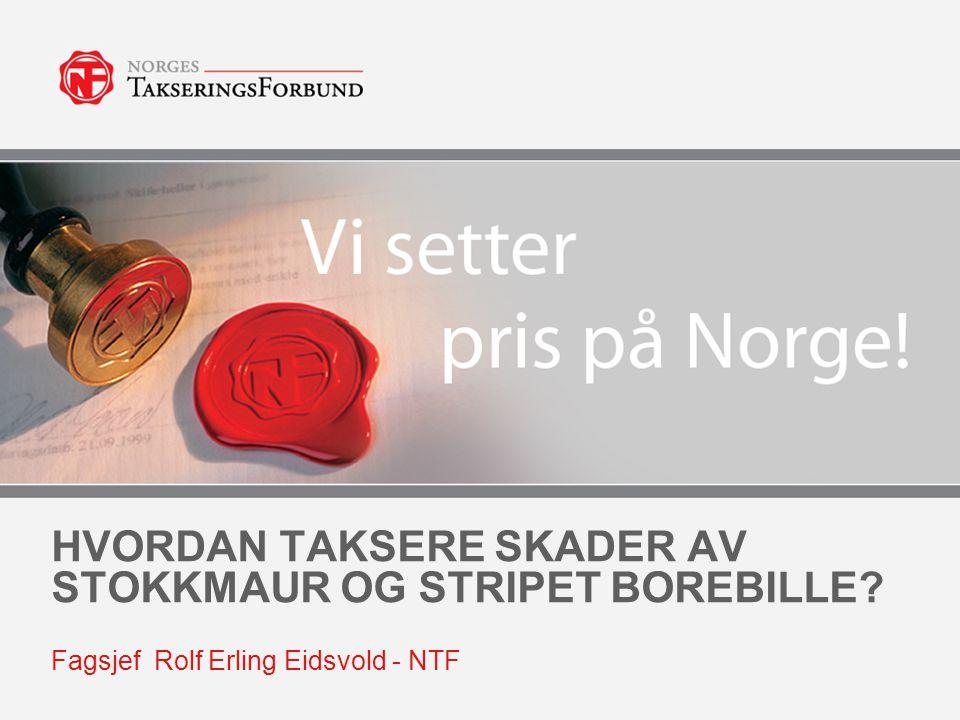 HVORDAN TAKSERE SKADER AV STOKKMAUR OG STRIPET BOREBILLE? Fagsjef Rolf Erling Eidsvold - NTF