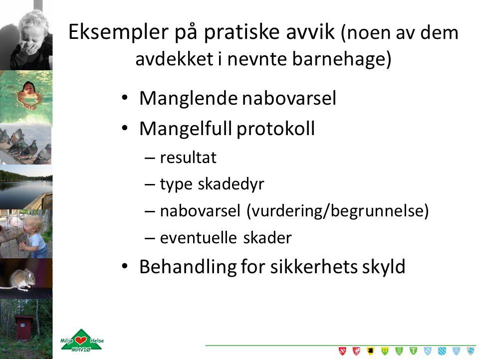 Manglende nabovarsel Mangelfull protokoll – resultat – type skadedyr – nabovarsel (vurdering/begrunnelse) – eventuelle skader Behandling for sikkerhet