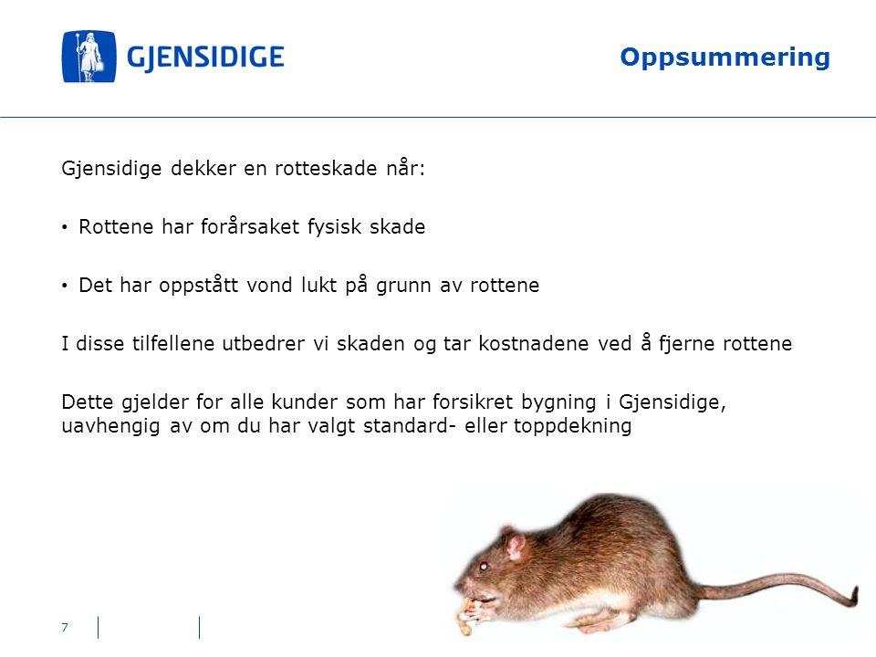 Oppsummering Gjensidige dekker en rotteskade når: Rottene har forårsaket fysisk skade Det har oppstått vond lukt på grunn av rottene I disse tilfellen