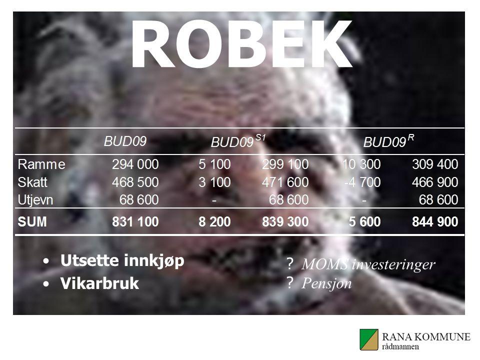 ROBEK Utsette innkjøp Vikarbruk MOMS investeringer Pensjon