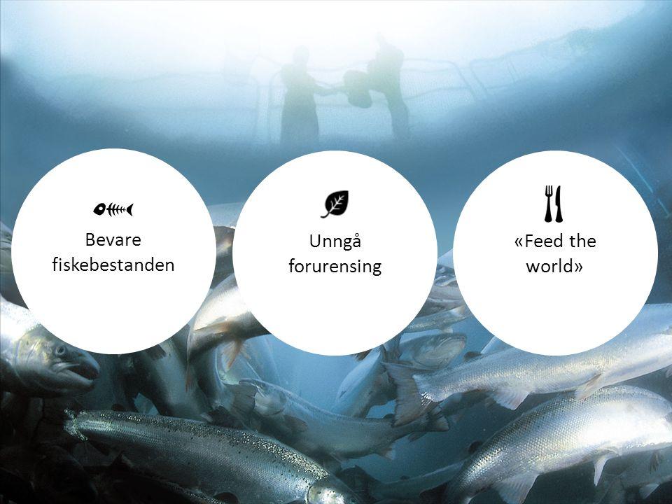 Bevare fiskebestanden Unngå forurensing «Feed the world»