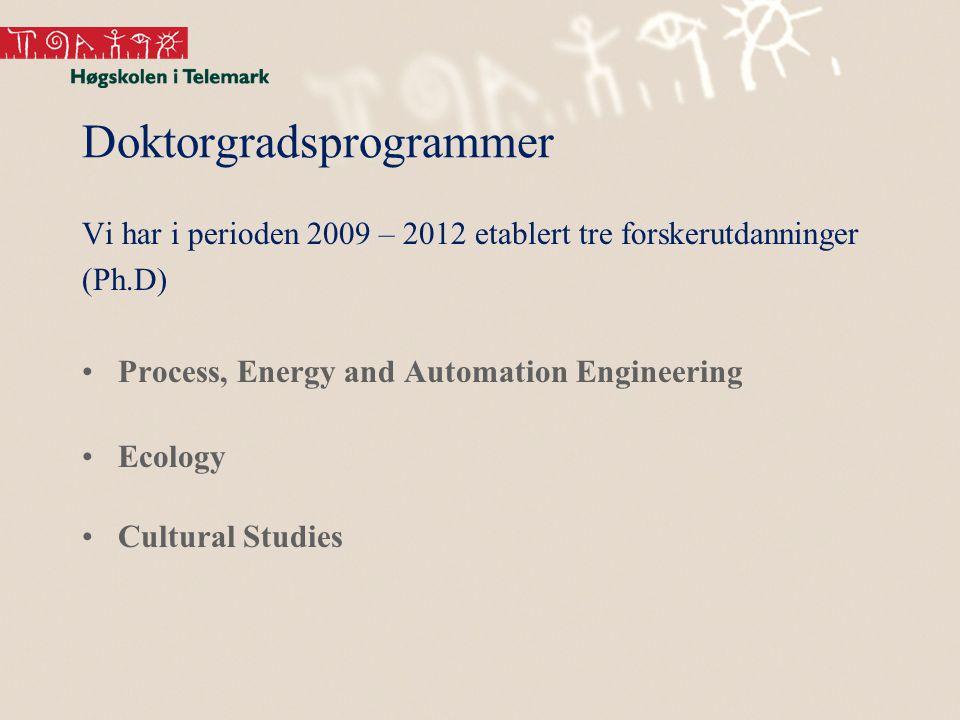 Doktorgradsprogrammer Vi har i perioden 2009 – 2012 etablert tre forskerutdanninger (Ph.D) Process, Energy and Automation Engineering Ecology Cultural