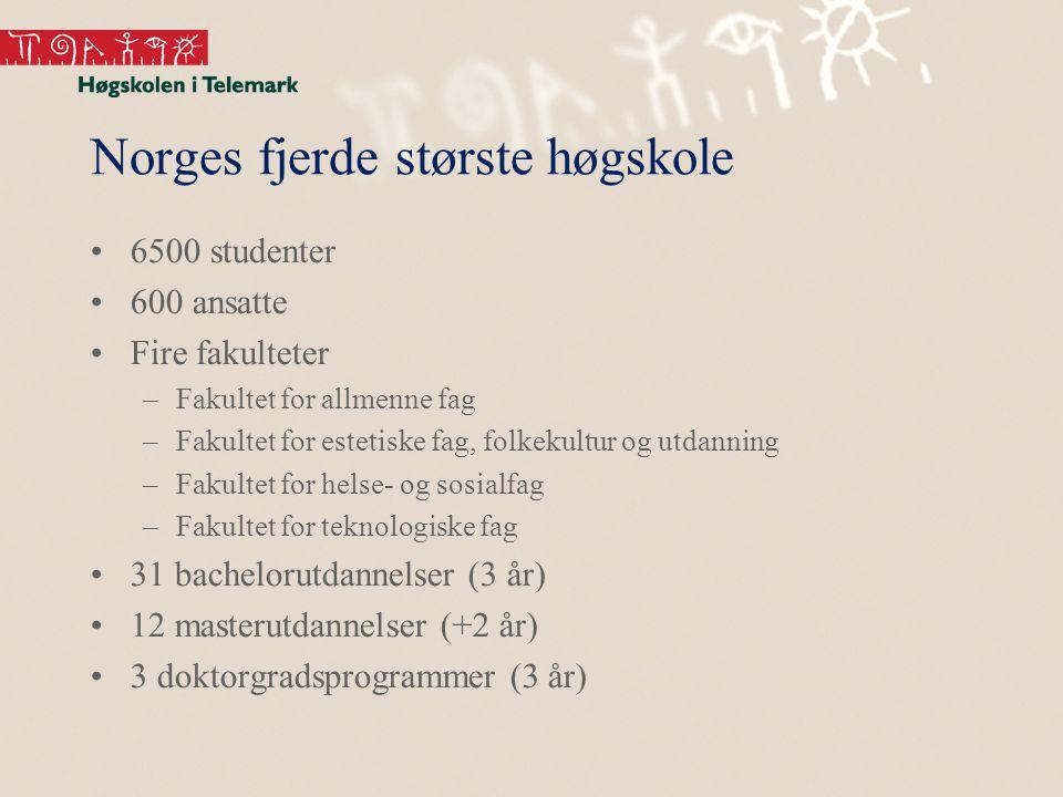 Norges fjerde største høgskole 6500 studenter 600 ansatte Fire fakulteter –Fakultet for allmenne fag –Fakultet for estetiske fag, folkekultur og utdanning –Fakultet for helse- og sosialfag –Fakultet for teknologiske fag 31 bachelorutdannelser (3 år) 12 masterutdannelser (+2 år) 3 doktorgradsprogrammer (3 år)
