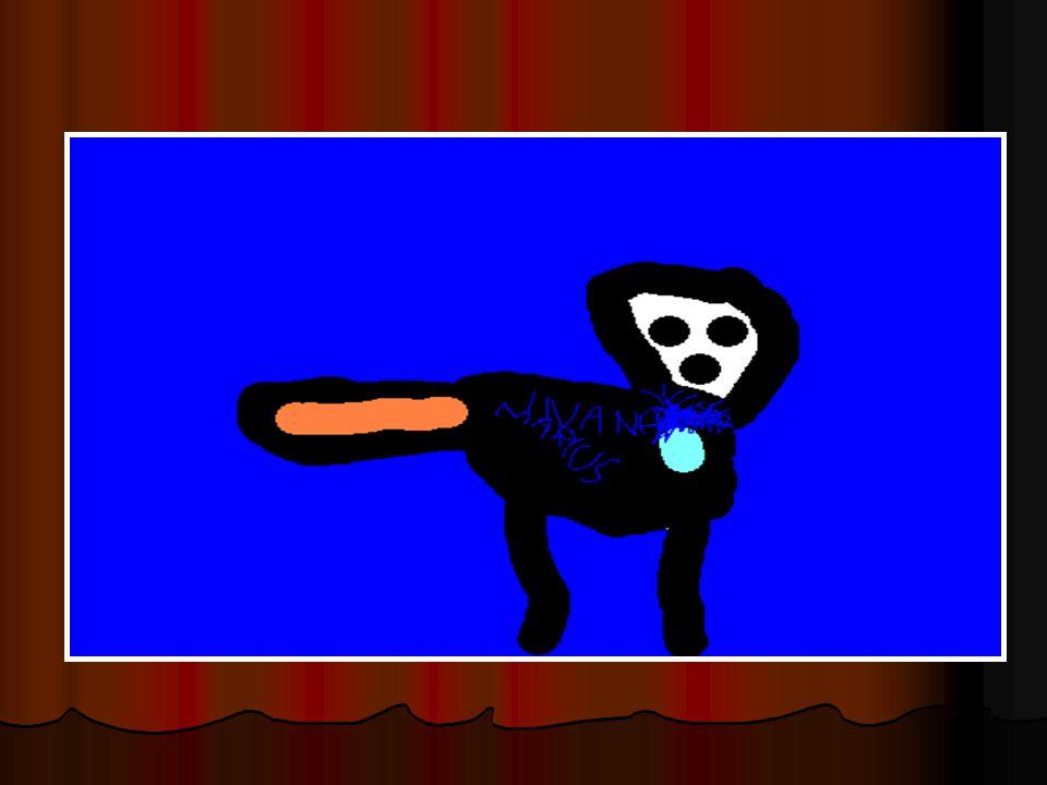 Dyret er en katt. Dyret er en katt. Dyret er 0 år. Dyret er 0 år. Inanna er svart. Inanna er svart. Inanna liker ost. Inanna liker ost. Inanna liker å
