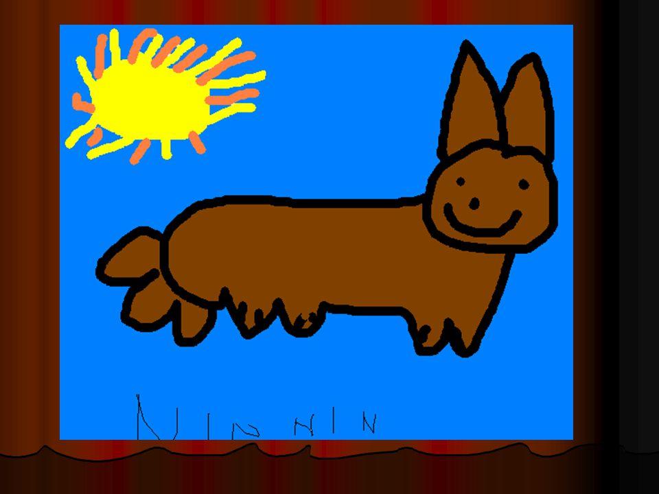 Ninnin er en kanin. Ninnin er 1 år gammel. Hun har brun litt tjukk pels. Ørene hennes er ca. 3 cm. Hun liker å hoppe ute i gresset.