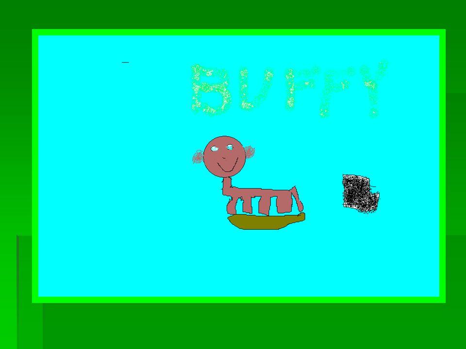 Buffy Det er en hund Den er noen dager gammel Den er lysebrun og litt mørkebrun Hun liker å spise tørfor Hun liker å kose.