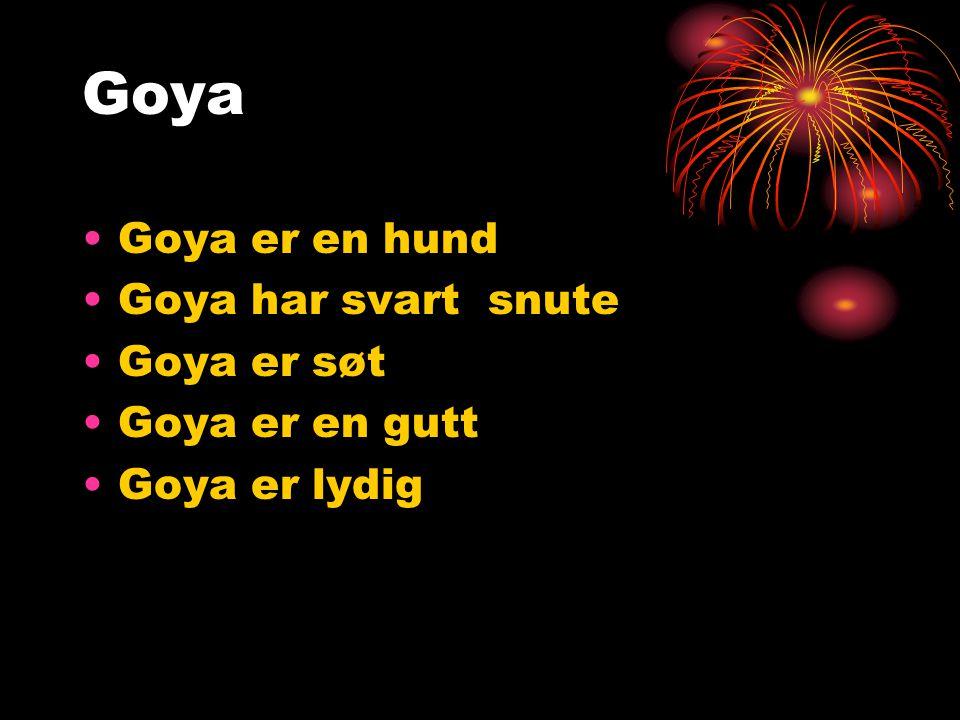 Goya Goya er en hund Goya har svart snute Goya er søt Goya er en gutt Goya er lydig