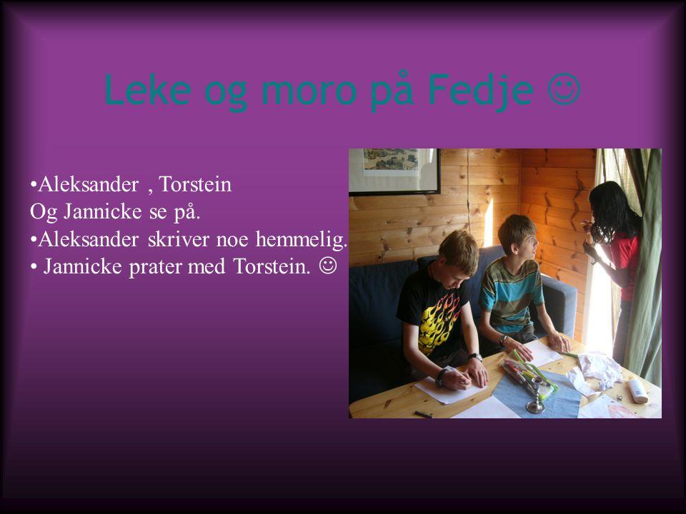 Leke og moro på Fedje Aleksander, Torstein Og Jannicke se på. Aleksander skriver noe hemmelig. Jannicke prater med Torstein.
