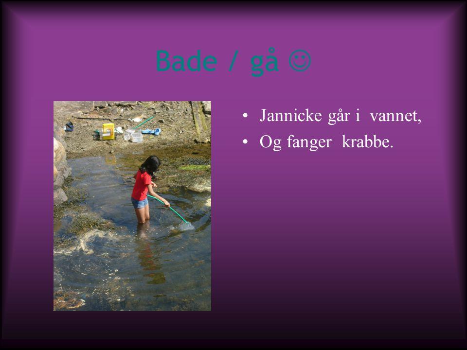 Bade / gå Jannicke går i vannet, Og fanger krabbe.