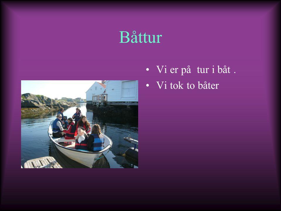 Båttur Vi er på tur i båt. Vi tok to båter