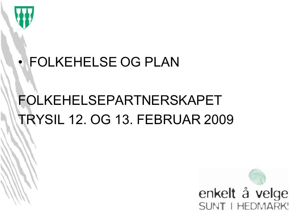 FOLKEHELSE OG PLAN FOLKEHELSEPARTNERSKAPET TRYSIL 12. OG 13. FEBRUAR 2009