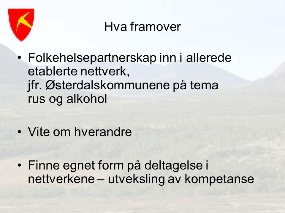 Hva framover Folkehelsepartnerskap inn i allerede etablerte nettverk, jfr. Østerdalskommunene på tema rus og alkohol Vite om hverandre Finne egnet for