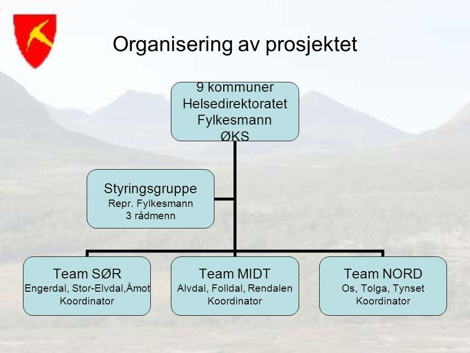 Organisering av prosjektet 9 kommuner Helsedirektoratet Fylkesmann ØKS Team SØR Engerdal, Stor-Elvdal,Åmot Koordinator Team MIDT Alvdal, Folldal, Rend