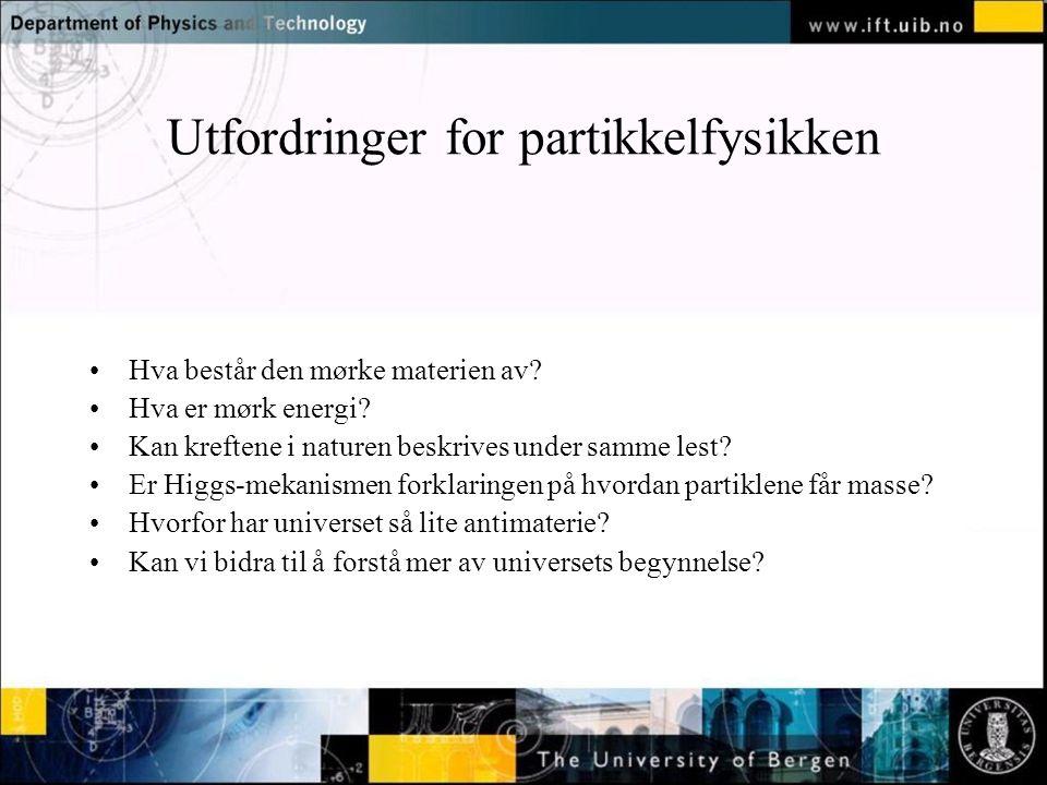 Utfordringer for partikkelfysikken Hva består den mørke materien av.