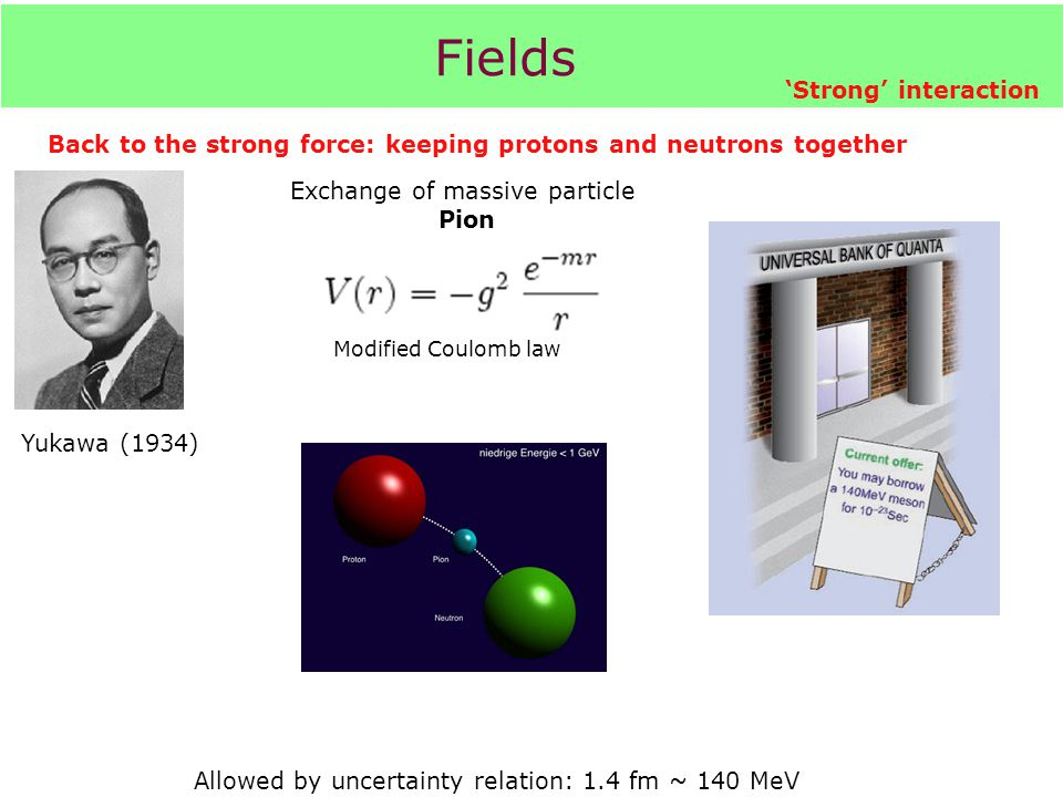Fields 'Strong' interaction Modified Coulomb law Back to the strong force: keeping protons and neutrons together Allowed by uncertainty relation: 1.4 fm ~ 140 MeV Yukawa (1934) Exchange of massive particle Pion