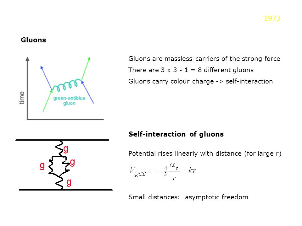 Gluons Gluons are massless carriers of the strong force There are 3 x 3 - 1 = 8 different gluons Gluons carry colour charge -> self-interaction Self-i