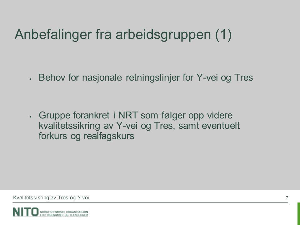 7 Anbefalinger fra arbeidsgruppen (1)  Behov for nasjonale retningslinjer for Y-vei og Tres  Gruppe forankret i NRT som følger opp videre kvalitetssikring av Y-vei og Tres, samt eventuelt forkurs og realfagskurs