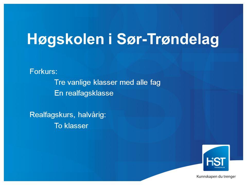 Høgskolen i Sør-Trøndelag Forkurs: Tre vanlige klasser med alle fag En realfagsklasse Realfagskurs, halvårig: To klasser