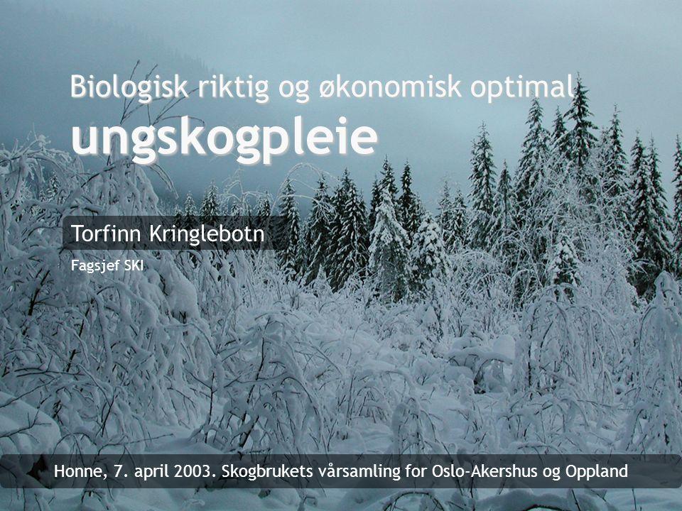 Biologisk riktig og økonomisk optimal ungskogpleie Torfinn Kringlebotn Fagsjef SKI Honne, 7. april 2003. Skogbrukets vårsamling for Oslo-Akershus og O