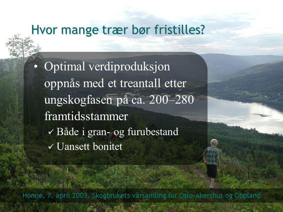 Hvor mange trær bør fristilles? Optimal verdiproduksjon oppnås med et treantall etter ungskogfasen på ca. 200–280 framtidsstammer Både i gran- og furu