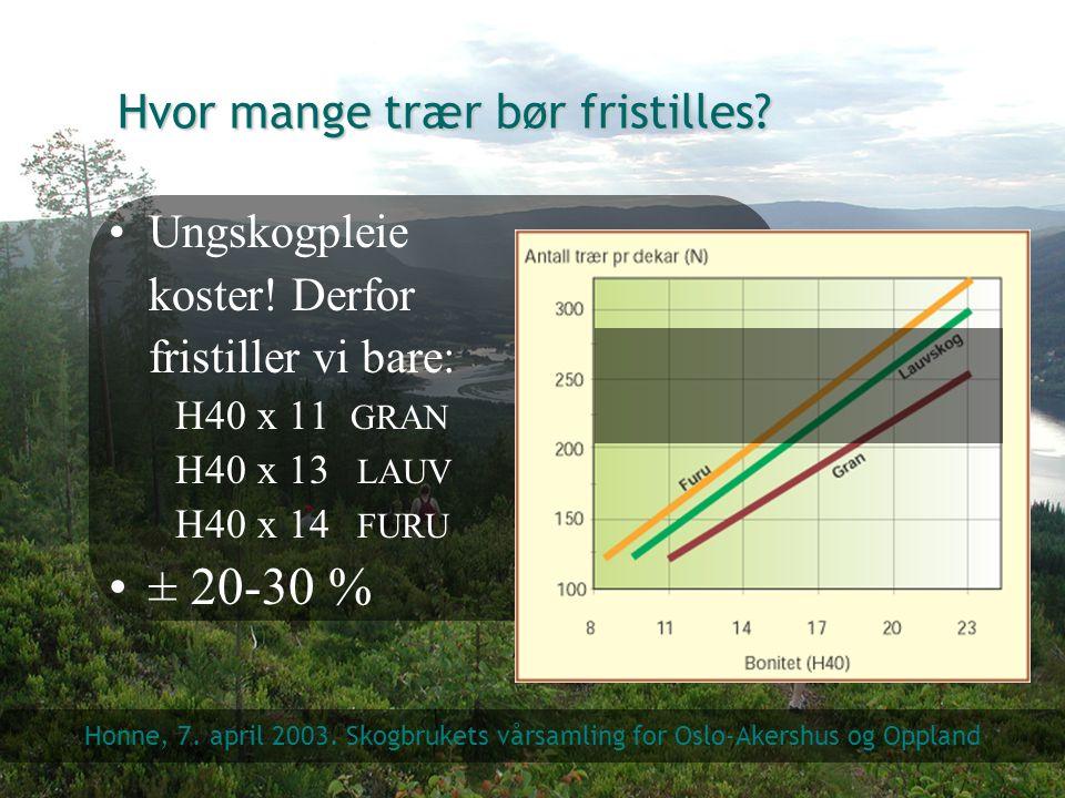 Hvor mange trær bør fristilles? Ungskogpleie koster! Derfor fristiller vi bare: H40 x 11 GRAN H40 x 13 LAUV H40 x 14 FURU ± 20-30 % Honne, 7. april 20