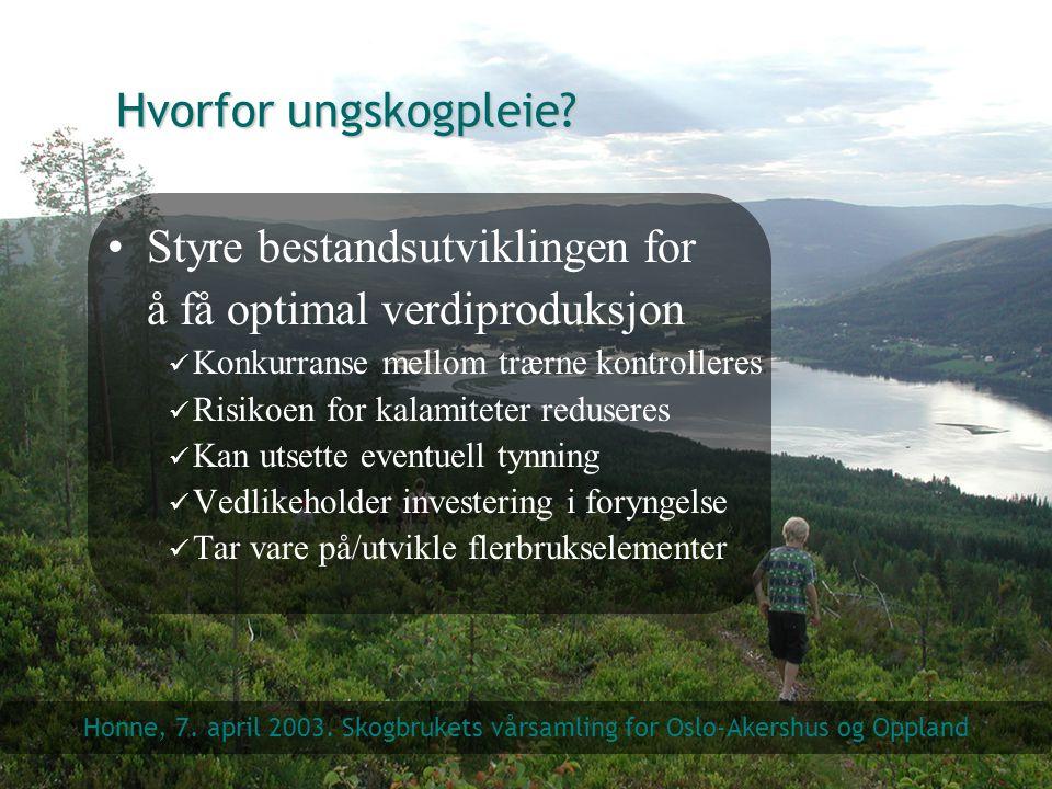 Hvorfor ungskogpleie? Styre bestandsutviklingen for å få optimal verdiproduksjon Konkurranse mellom trærne kontrolleres Risikoen for kalamiteter redus