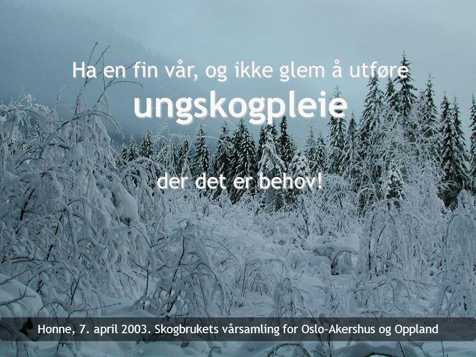 Ha en fin vår, og ikke glem å utføre ungskogpleie der det er behov!
