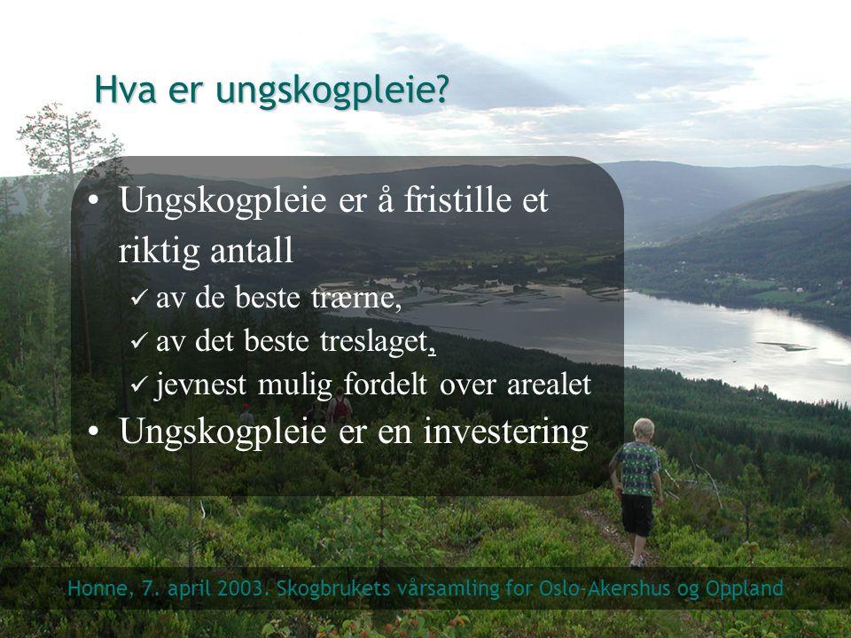 Hva er ungskogpleie? Ungskogpleie er å fristille et riktig antall av de beste trærne, av det beste treslaget, jevnest mulig fordelt over arealet Ungsk
