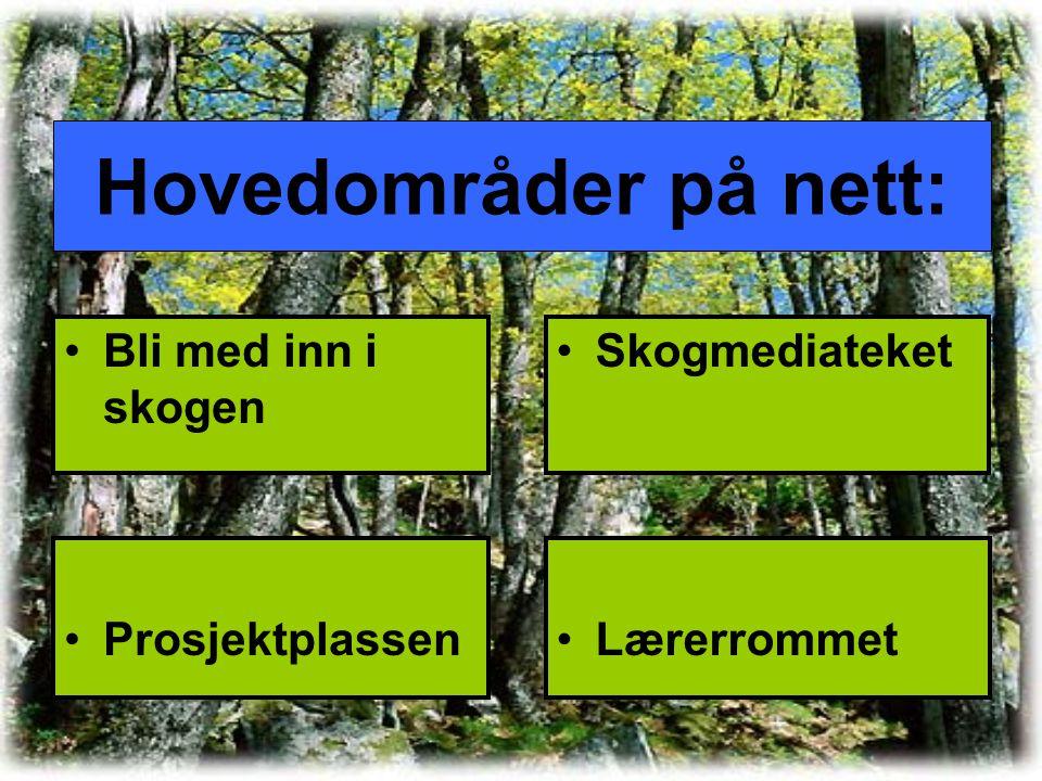 Hovedområder på nett: Bli med inn i skogen Skogmediateket ProsjektplassenLærerrommet