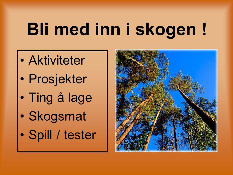 Bli med inn i skogen ! Aktiviteter Prosjekter Ting å lage Skogsmat Spill / tester