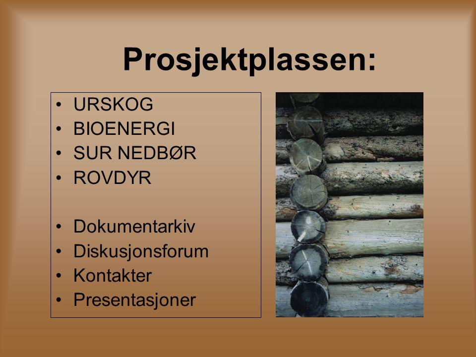 Prosjektplassen: URSKOG BIOENERGI SUR NEDBØR ROVDYR Dokumentarkiv Diskusjonsforum Kontakter Presentasjoner
