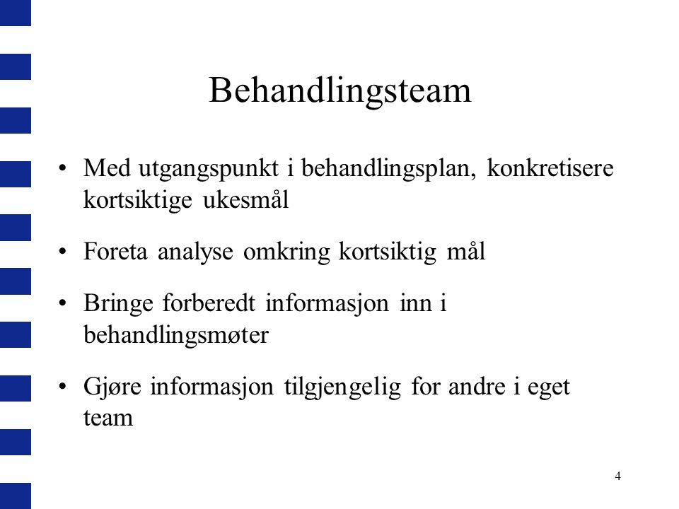 4 Behandlingsteam Med utgangspunkt i behandlingsplan, konkretisere kortsiktige ukesmål Foreta analyse omkring kortsiktig mål Bringe forberedt informas