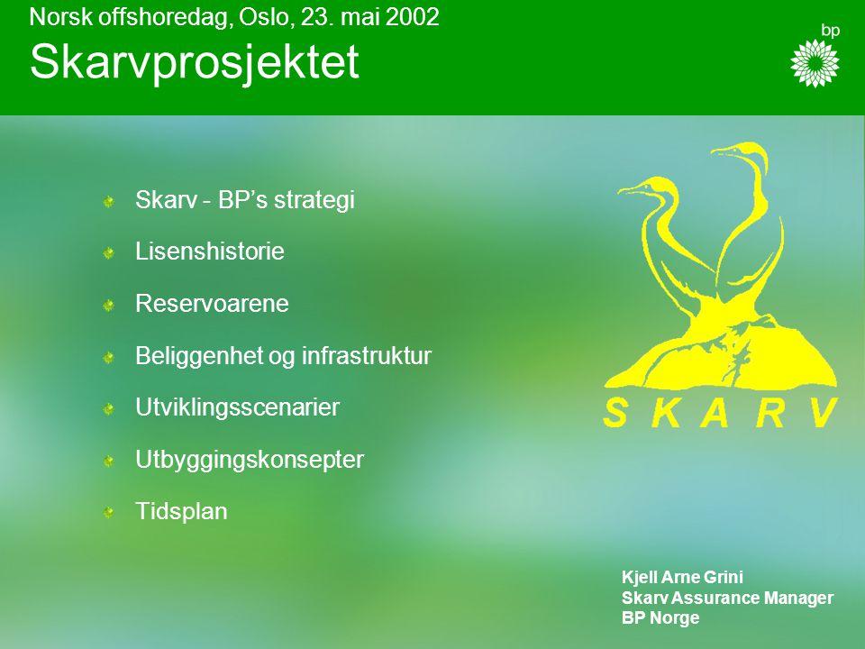 Leteaktivitet Olje/gass funn Produksjon Andre aktører Skarv kan bli det neste gass-knutepunktet i Midt-Norge og dermed bidra til effektiv utnytting av olje- og gassressursene i området Skarv faller naturlig inn i BP's strategiske ambisjoner for Midt- Norge: Å ha en betydelig rolle innen gass Skarvprosjektet BP i posisjon for å vokse innen gass