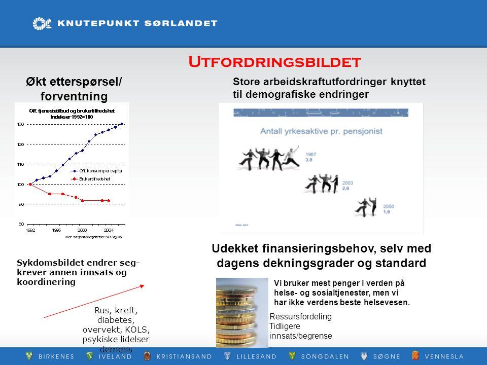 Økt etterspørsel/ forventning Store arbeidskraftutfordringer knyttet til demografiske endringer Rus, kreft, diabetes, overvekt, KOLS, psykiske lidelse