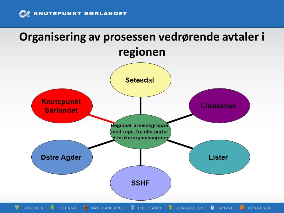Organisering av prosessen vedrørende avtaler i regionen Regional arbeidsgruppe med repr. fra alle parter + brukerorganisasjoner SetesdalLindesnesListe