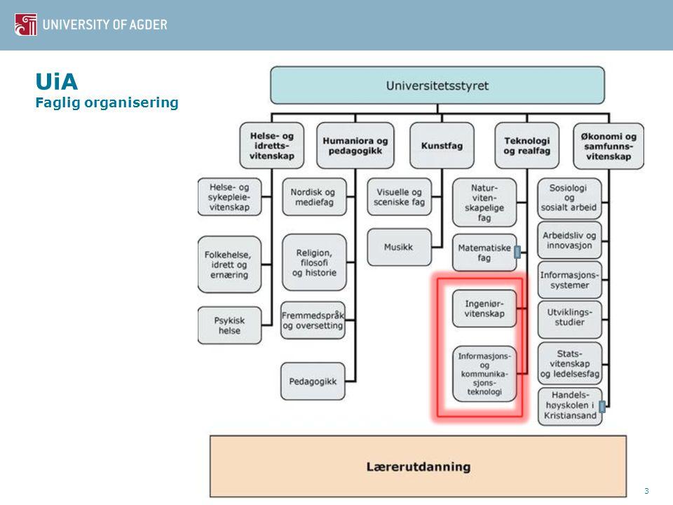 UiA Faglig organisering 3